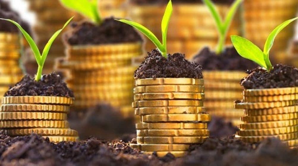 اقتصاد-کشاورزی