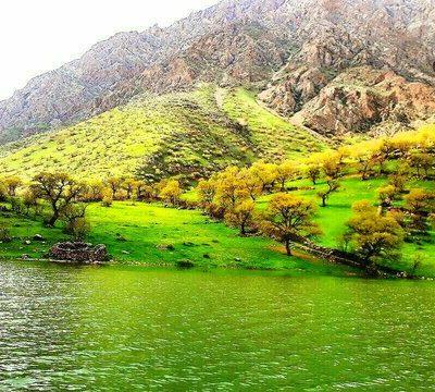 واحدهای پیام نور کردستان
